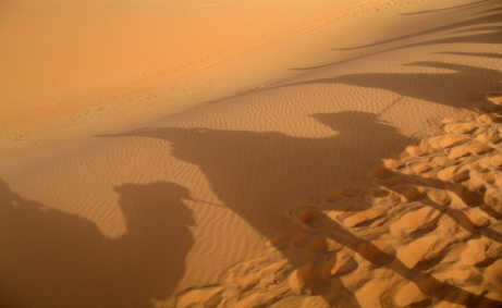 Gates scholar writes for The Guardian