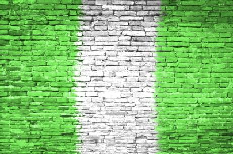 Alumnus publishes book on anti-corruption drive in Nigeria