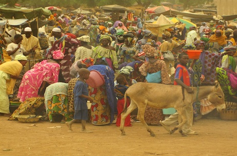 Mali: war and medicine