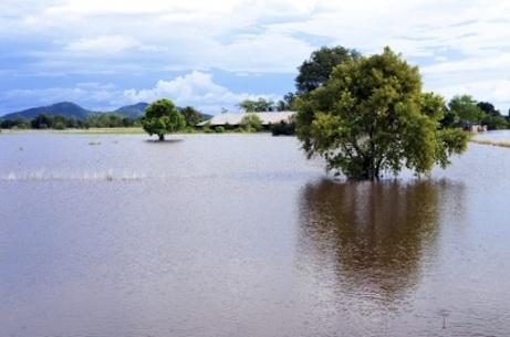 Study reveals economic impact of El Niño