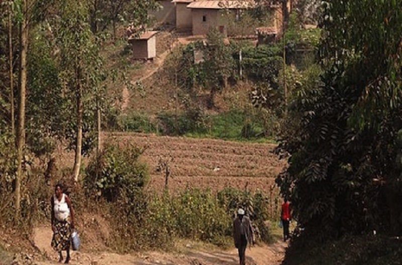 Health risks of urbanisation of rural areas