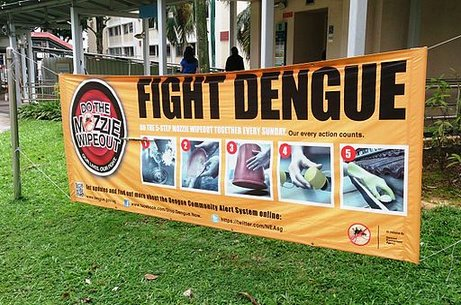 Mapping dengue fever