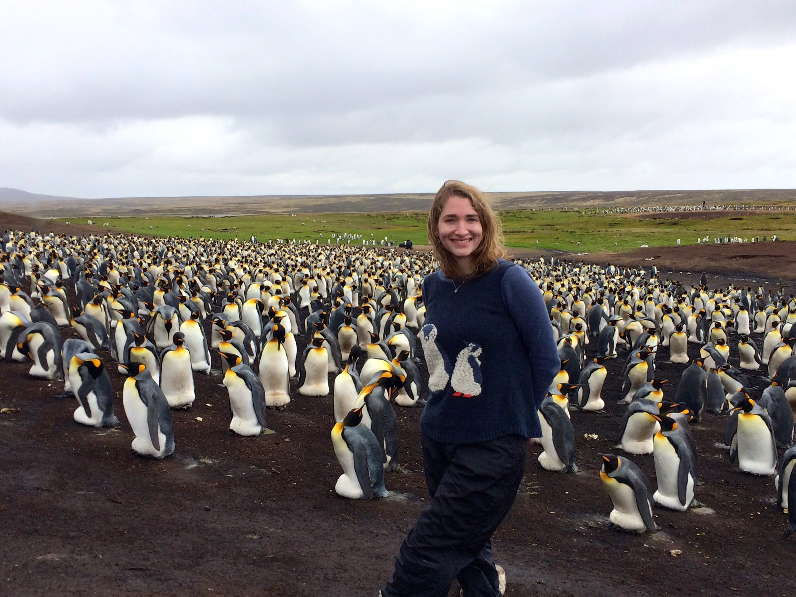 Exploring research opportunities in the Falklands