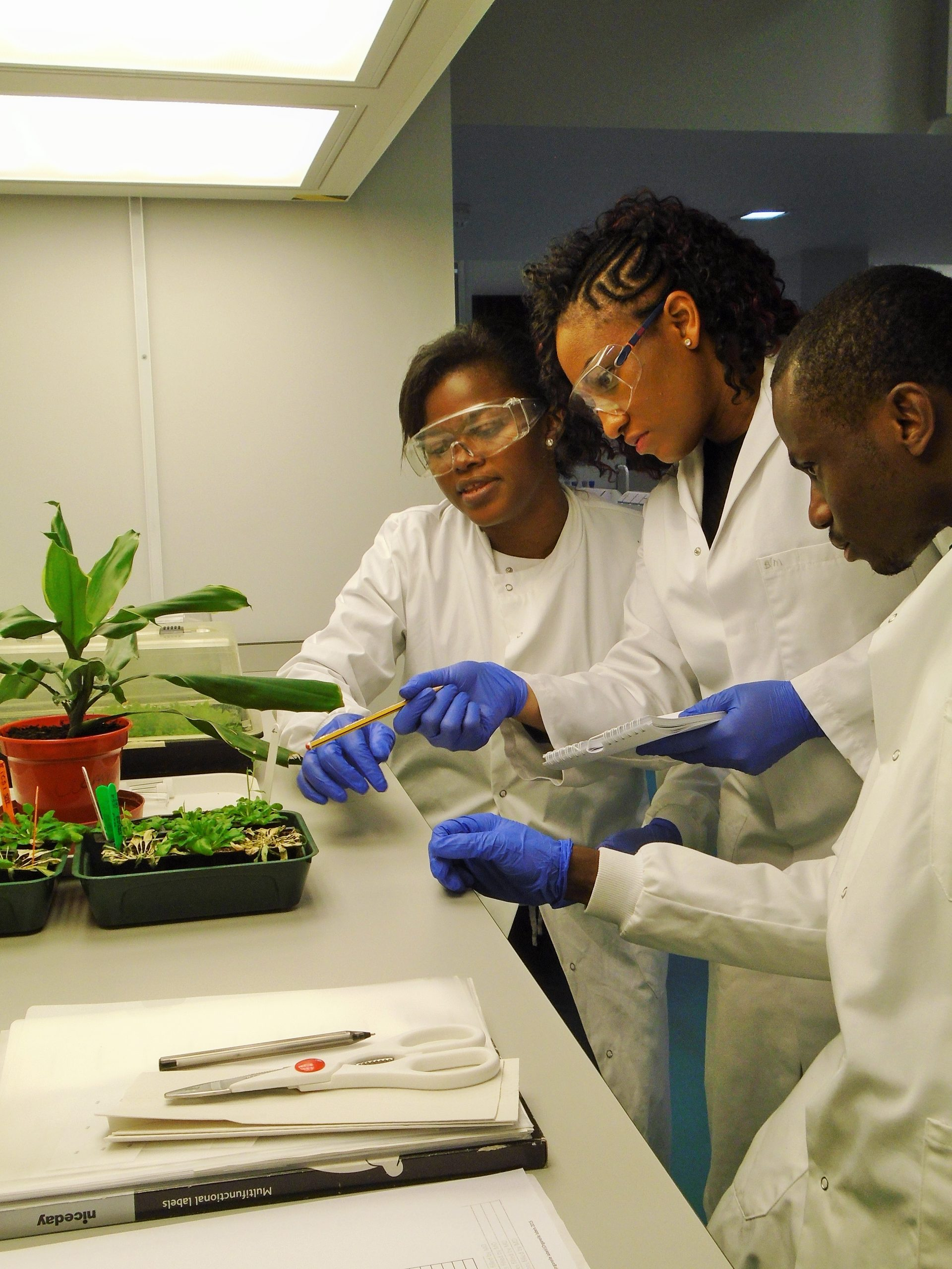 Science workshop aims to boost agriculture research in Africa