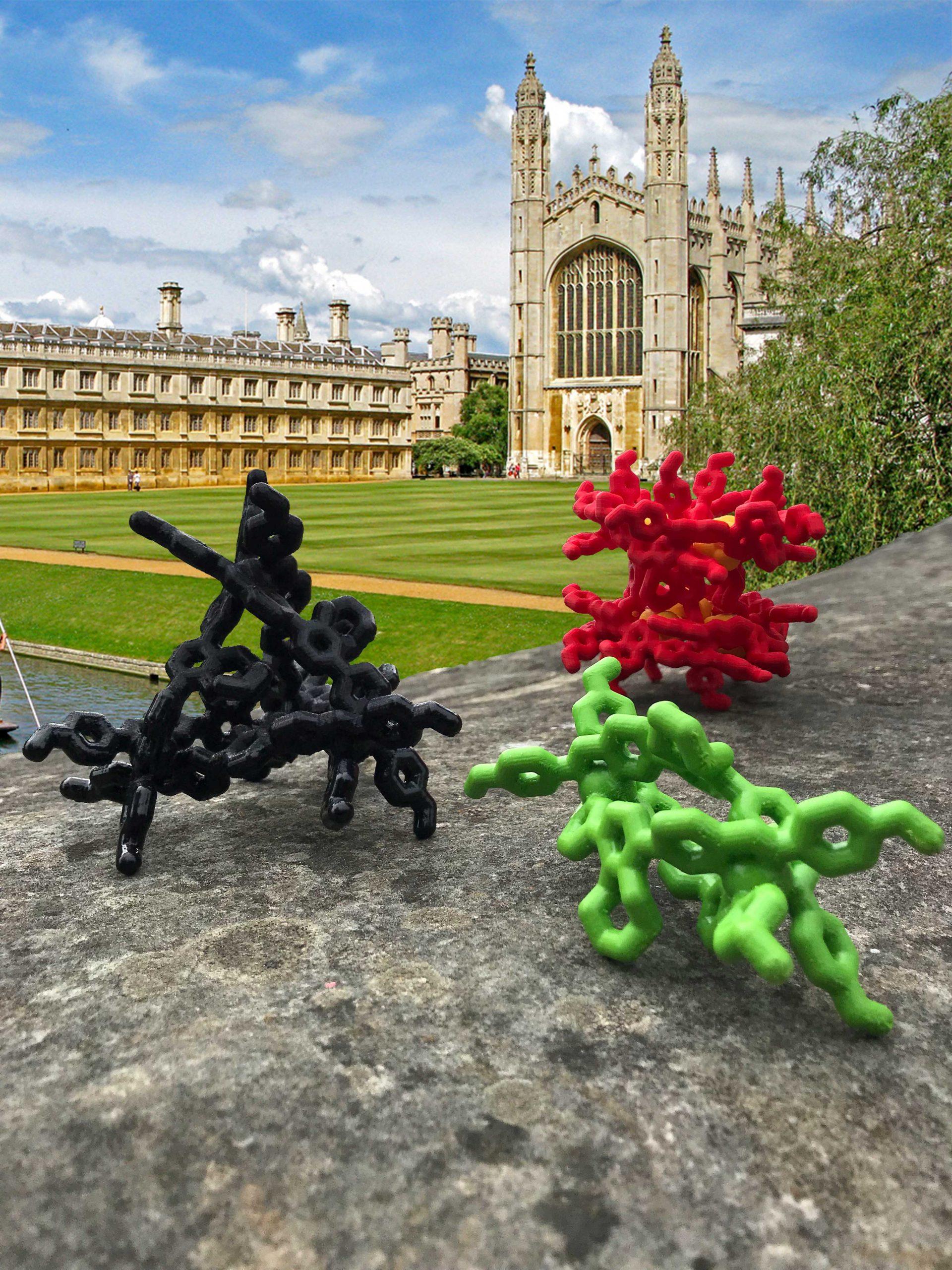 Transforming supramolecular complexes