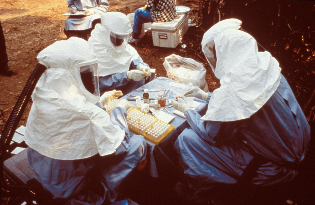 'Half of Ebola cases have gone undetected'