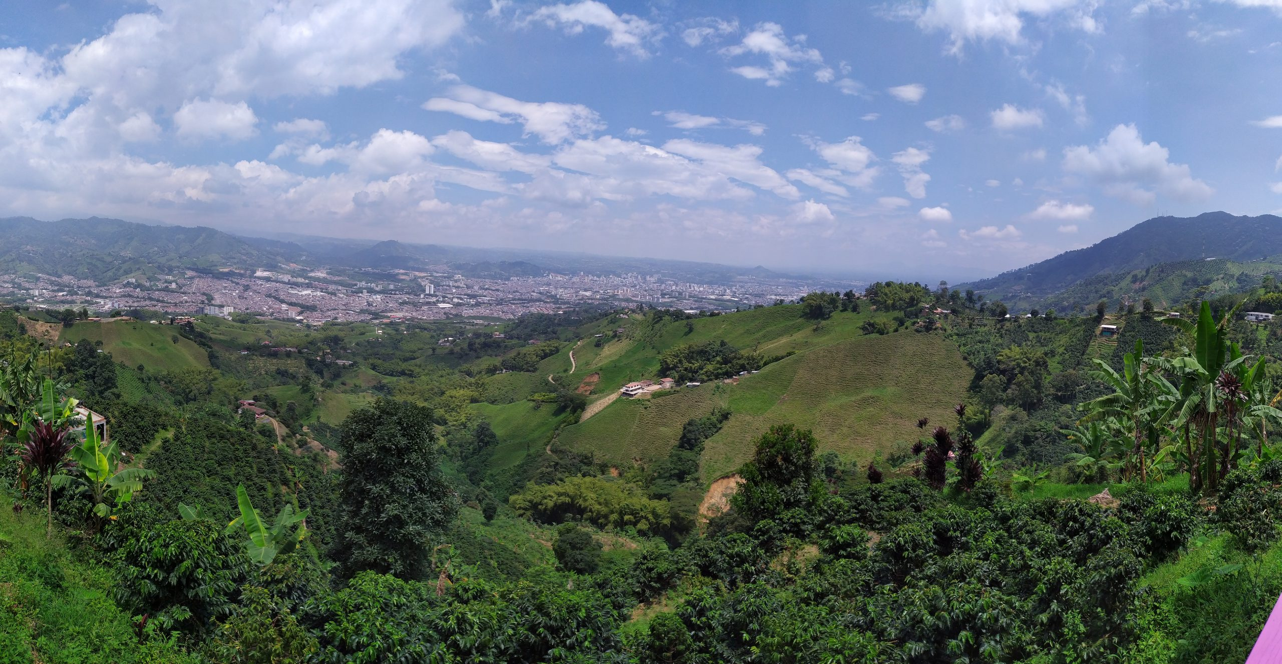 Alumna leads international consortium for smallholders in Colombia