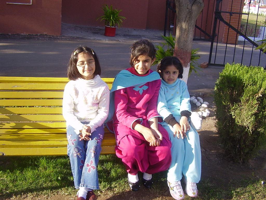 Punjab education reforms 'not cream-skimming'
