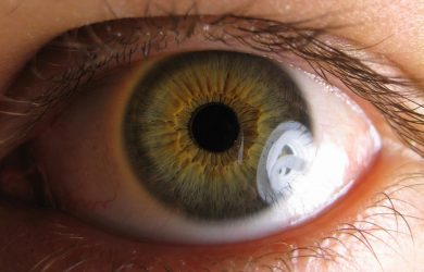 Study offers hope for future glaucoma treatment